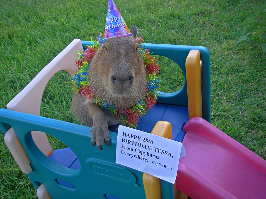 Me with Tessa's birthday card.