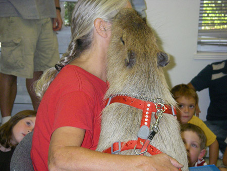 Me giving my owner a kiss during the book reading