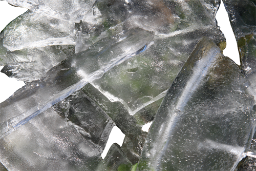 Ice from my bowl