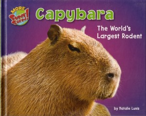 Book « Capybara Madness