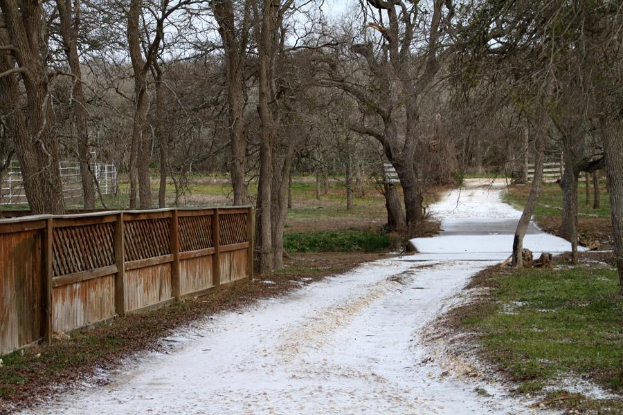 The path to Capybara Creek
