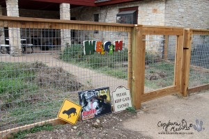 Fence and signs