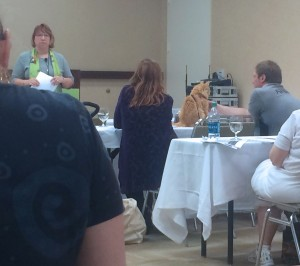 Cat sits on a table during BlogPaws presention