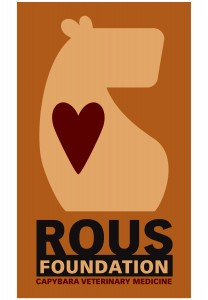 Logo for the ROUS Foundation