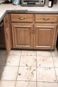 A very muddy floor and kitchen counter